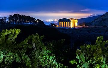 Templi di Segesta e Selinunte - Ricerca