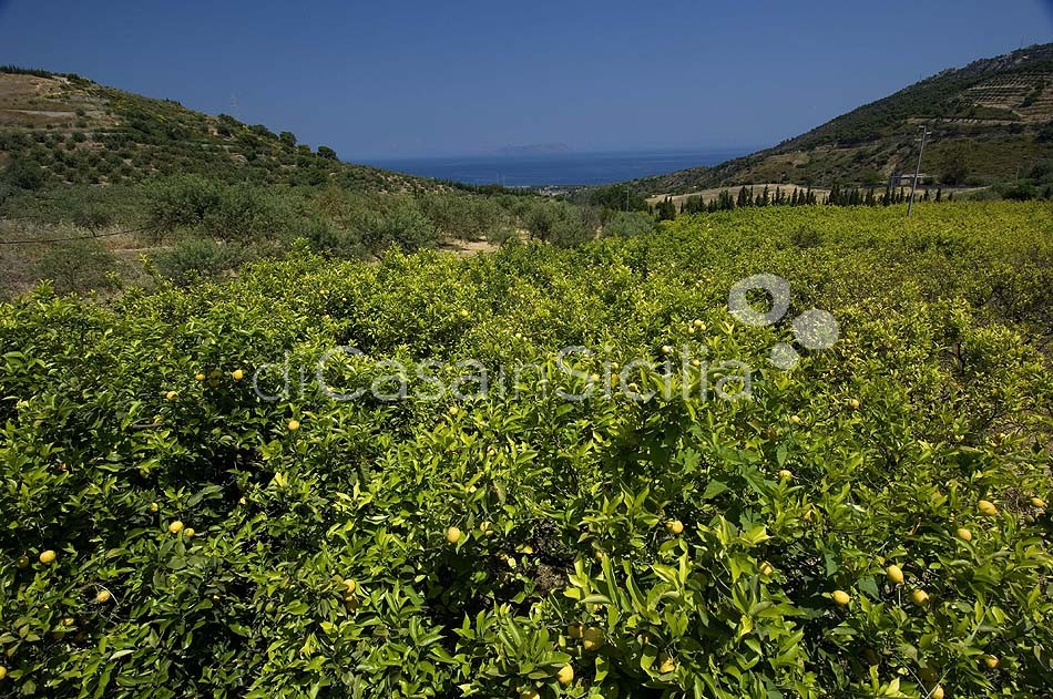 Meer & Natur in Sizilien – Ferienwohnungen | Di Casa in Sicilia - 7