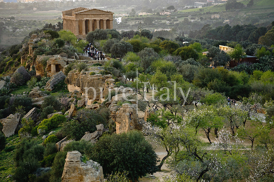 Holiday villas with pool, southeast of Sicily | Pure Italy - 45