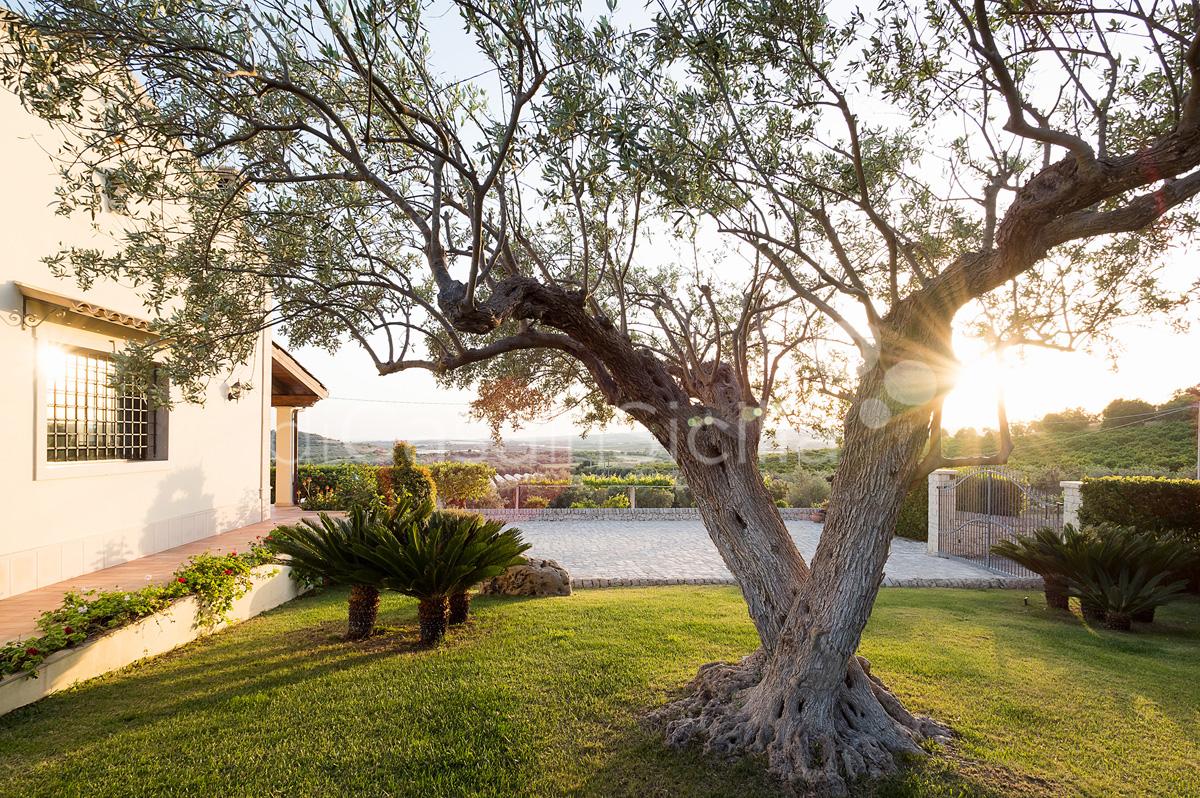 Villa Dora Villa con Piscina con Idromassaggio in affitto Noto Sicilia - 15