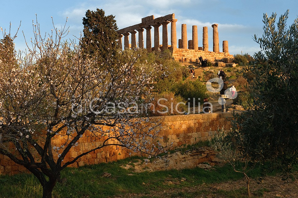 Albirosa Villa al Mare con Piscina in affitto Mazara del Vallo Sicilia  - 38