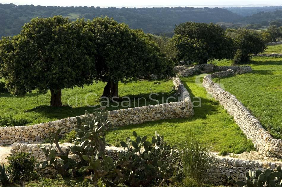 Corte Iblea Terrazza Camarina House with Pool for rent Ragusa Sicily - 4